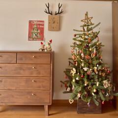 賃貸インテリア/模様替え/クリスマスデコレーション/クリスマスオーナメント/クリスマス雑貨/クリスマスインテリア/... 今年もお気に入りのツリー、飾りました☆ …