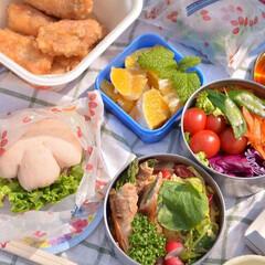 おべんとう/お花見弁当/お昼ごはん/二人暮らし/お弁当/LIMIAごはんクラブ/... 今年のお花見弁当。  急きょ作ったので …