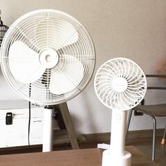 夏支度/扇風機/雨季ウキフォト投稿キャンペーン/おすすめアイテム/令和の一枚/LIMIAファンクラブ/... 我が家の扇風機。  大きいものは厳選して…