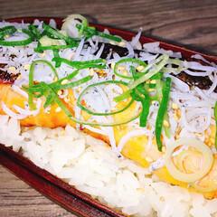 お昼ごはん/デコ弁/弁当/ボリューム満点/夫弁当/旦那弁当/... もりもり鮭弁当だーい𓆛𓆜  ◾ご飯on鮭…(3枚目)