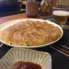 餃子のタレ/ひき肉/キャベツ/ニラ/餃子/レシピ/... 餃子 *材料* 餃子の皮  40枚  豚…