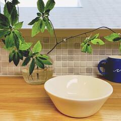 イッタラ ティーマ ボウル 15cm ホワイト | イッタラ(鉢、ボウル)を使ったクチコミ「先日投稿したプレートと同色の、 ティーマ…」