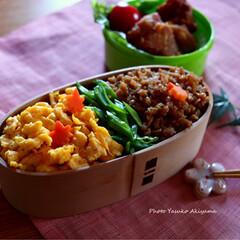 ブログもみてね/秋山靖子/アンチエイジングフードマイスター/銀座/料理教室東京/料理教室/... そぼろ弁当♪  卵そぼろと 鶏そぼろ  …