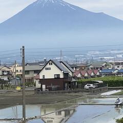 富士山麓/富士山 御無沙汰の富士山🗻です😅  すっかり雪❄…(1枚目)