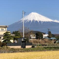 富士山 おはようございます☀ 今日で令和元年、最…