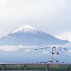 雪化粧/富士山麓/富士山 今日の富士山🗻  昨夜の雨☔️が富士山🗻…