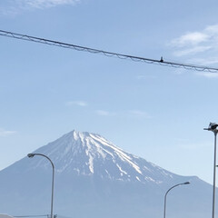 富士山/富士山麓 おはようございます☀  今朝の富士山🗻