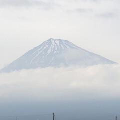 富士山麓/富士山 こんばんは☁️  仕事後にCOAちゃん🐩…