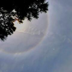 ハロ/太陽のハロ現象/国分海浜公園/鹿児島/おでかけワンショット/風景 鹿児島の国分海浜公園にて 太陽の周りにリ…