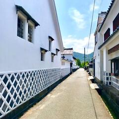 素敵/白壁/萩城下町/萩/山口/おでかけワンショット/... 山口萩の城下町を歩いてみました 白壁の続…