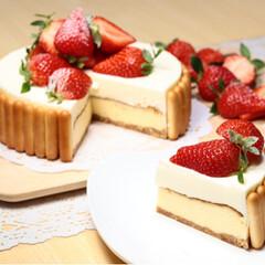 手作りお菓子/お菓子作り/わたしのごはん ダブルチーズケーキ . 上から順に レア…