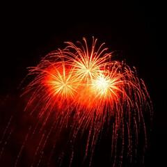 令和元年フォト投稿キャンペーン/令和の一枚 横浜開港祭での花火です。(3枚目)