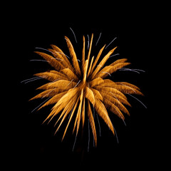 令和元年フォト投稿キャンペーン/令和の一枚 横浜開港祭での花火です。(2枚目)