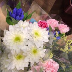 わたしのお盆/スーパーマーケット/花屋さんの花/ライフ 3、2019年8月18日、トナリエの花屋…(8枚目)