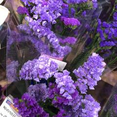 ライフ/花屋さんの花/スーパーマーケット/わたしのお盆 2、2019年8月18日、トナリエの花屋…(9枚目)