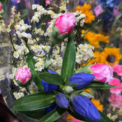 ライフ/スーパーマーケット/至福のひととき/花屋さんの花 2、2019年7月7日、トナリエの花屋さ…(9枚目)