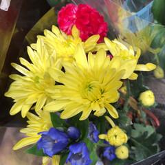 わたしのお盆/スーパーマーケット/花屋さんの花/ライフ 3、2019年8月18日、トナリエの花屋…(6枚目)