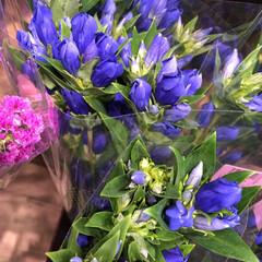 ライフ/花屋さんの花/スーパーマーケット/わたしのお盆 2、2019年8月18日、トナリエの花屋…(6枚目)