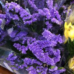 至福のひととき/花屋さんの花/よってって 1、2019年7月12日、よってっての花…(3枚目)