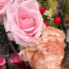 花屋さんの花/至福のひととき/スーパーマーケット/ライフ 1、2019年7月7日、トナリエの花屋さ…(10枚目)