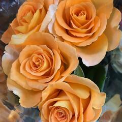 ありがとう/花屋さんの花/よってって/七夕飾り/季節インテリア/七夕インテリア/... 4、2020年6月26日、本日、久米診療…(7枚目)