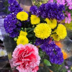 ライフ/至福のひととき/花屋さんの花/スーパーマーケット 3、2019年7月4日、トナリエの花屋さ…(9枚目)