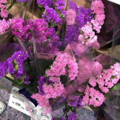 ライフ/花屋さんの花/スーパーマーケット/わたしのお盆 2、2019年8月18日、トナリエの花屋…(8枚目)