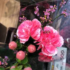 ライフ/花屋さんの花/スーパーマーケット/わたしのお盆 2、2019年8月18日、トナリエの花屋…(2枚目)