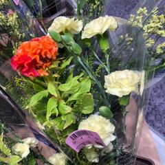 スーパーマーケット/花屋さんの花/至福のひととき/ライフ 3、2019年7月2日、トナリエの花屋さ…(3枚目)