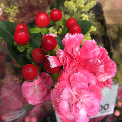 ライフ/花屋さんの花/スーパーマーケット/わたしのお盆 2、2019年8月18日、トナリエの花屋…(3枚目)