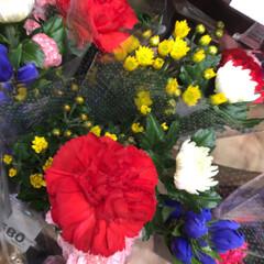 ライフ/花屋さんの花/スーパーマーケット/地元のオススメ 3、2019年8月7日、トナリエの花屋さ…