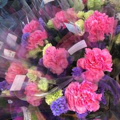 ありがとう/花屋さんの花/よってって/七夕飾り/季節インテリア/七夕インテリア/... 4、2020年6月26日、本日、久米診療…(4枚目)