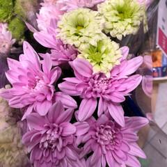 スーパーマーケット/花屋さんの花/ライフ/雨季ウキフォト投稿キャンペーン 2、2019年6月30日、トナリエの花屋…(7枚目)