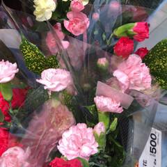 わたしのお盆/スーパーマーケット/花屋さんの花/ライフ 1、2019年8月18日、トナリエの花屋…(8枚目)