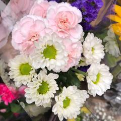 スーパーマーケット/花屋さんの花/至福のひととき/ライフ 2、2019年7月12日、トナリエの花屋…