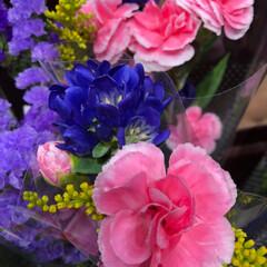 スーパーマーケット/花屋さんの花/至福のひととき/ライフ 2、2019年7月4日、トナリエの花屋さ…(7枚目)