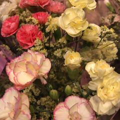 わたしのお盆/スーパーマーケット/花屋さんの花/ライフ 1、2019年8月18日、トナリエの花屋…(2枚目)