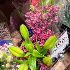 スーパーマーケット/花屋さんの花/至福のひととき/ライフ 2、2019年7月4日、トナリエの花屋さ…(2枚目)