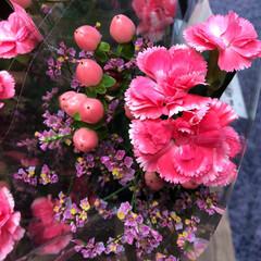 ライフ/花屋さんの花/スーパーマーケット/わたしのお盆 2、2019年8月18日、トナリエの花屋…(5枚目)