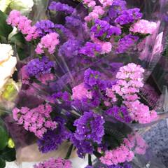 わたしのお盆/スーパーマーケット/花屋さんの花/ライフ 3、2019年8月18日、トナリエの花屋…(2枚目)