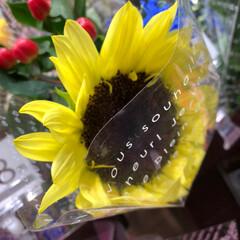 至福のひととき/花屋さんの花/スーパーマーケット/ライフ 2、2019年7月2日、トナリエの花屋さ…(4枚目)