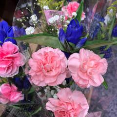 至福のひととき/花屋さんの花/スーパーマーケット/ライフ 2、2019年7月2日、トナリエの花屋さ…(10枚目)