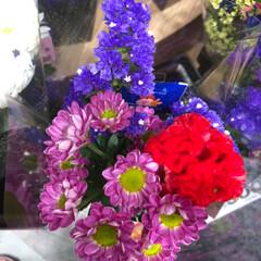 花屋さんの花/至福のひととき/スーパーマーケット/ライフ 3、2019年7月7日、トナリエの花屋さ…(2枚目)