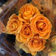 ありがとう/花屋さんの花/よってって/七夕飾り/季節インテリア/七夕インテリア/... 4、2020年6月26日、本日、久米診療…(10枚目)