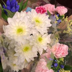 ライフ/花屋さんの花/スーパーマーケット/わたしのお盆 4、2019年8月18日、トナリエの花屋…