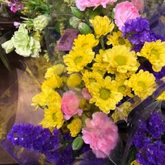 スーパーマーケット/花屋さんの花/ライフ/雨季ウキフォト投稿キャンペーン 2、2019年6月30日、トナリエの花屋…(4枚目)