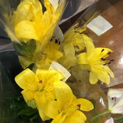 ありがとう/花屋さんの花/よってって/アクセサリー収納/ピアス収納/ネックレス収納/... 先日、買い物のついでに。よってって店。花…(6枚目)
