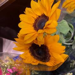 ライフ/スーパーマーケット/至福のひととき/花屋さんの花 2、2019年7月7日、トナリエの花屋さ…(7枚目)