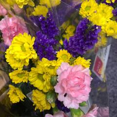 スーパーマーケット/花屋さんの花/ライフ/雨季ウキフォト投稿キャンペーン 2、2019年6月30日、トナリエの花屋…(6枚目)
