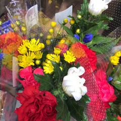 スーパーマーケット/花屋さんの花/ライフ/地元のオススメ 2、2019年8月7日、トナリエの花屋さ…(10枚目)